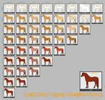 Chestnut Horse Genes