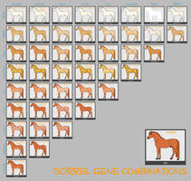 Sorrel Horse Genes by lXxMellodyxXl