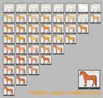 Sorrel Horse Genes