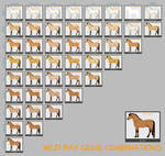 Wild Bay Horse Genes