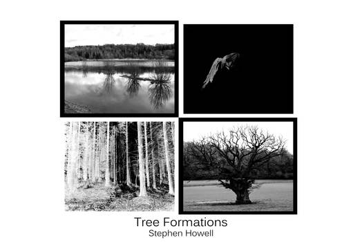 A Level final presentation   Tree Formations