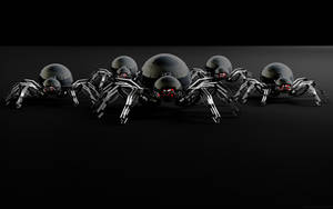 Spider II by xxtjxx