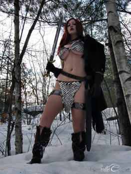 Red Sonja: Queen of the Frozen Wastes by BelleChere