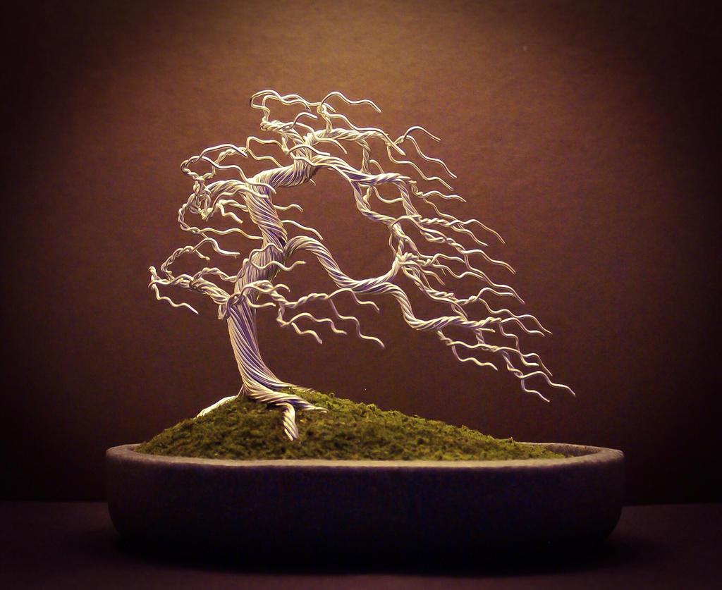 Wire Bonsai Tree Made By Steve Bowen By Bowenbonsai On Deviantart