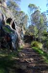 Shady Path Stair I 'Port'