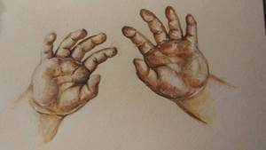 These are my hands