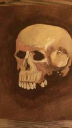 skull acrylic study