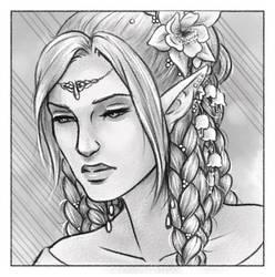 Elvish Braids by Gnewi