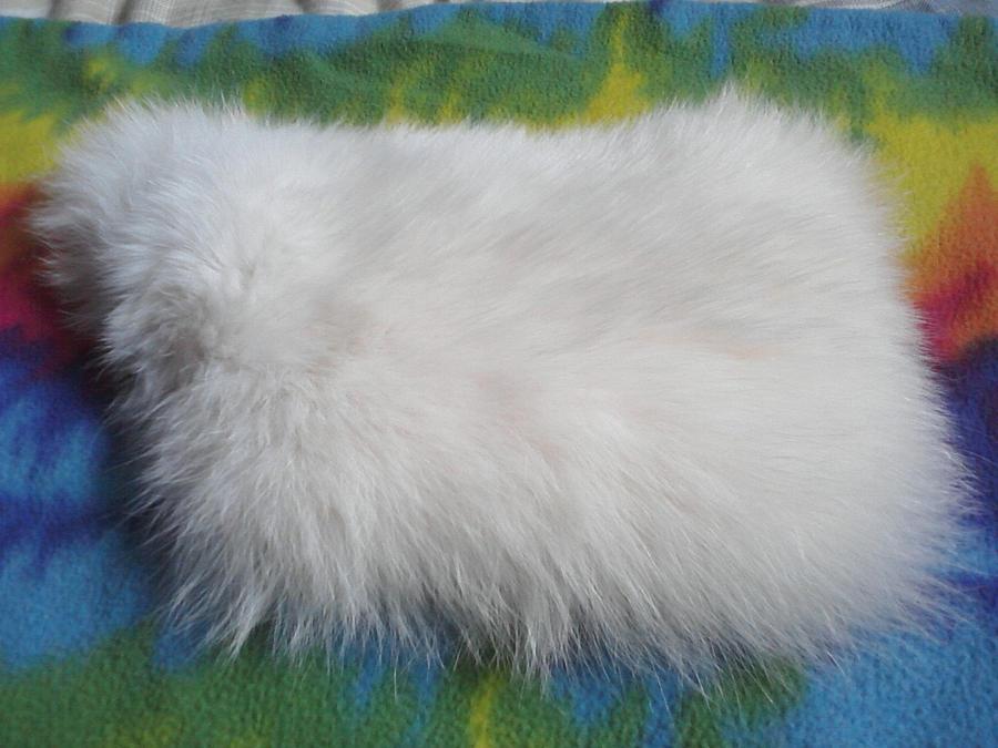 Arctic Fox Fur Piece by KonekoKaburagi