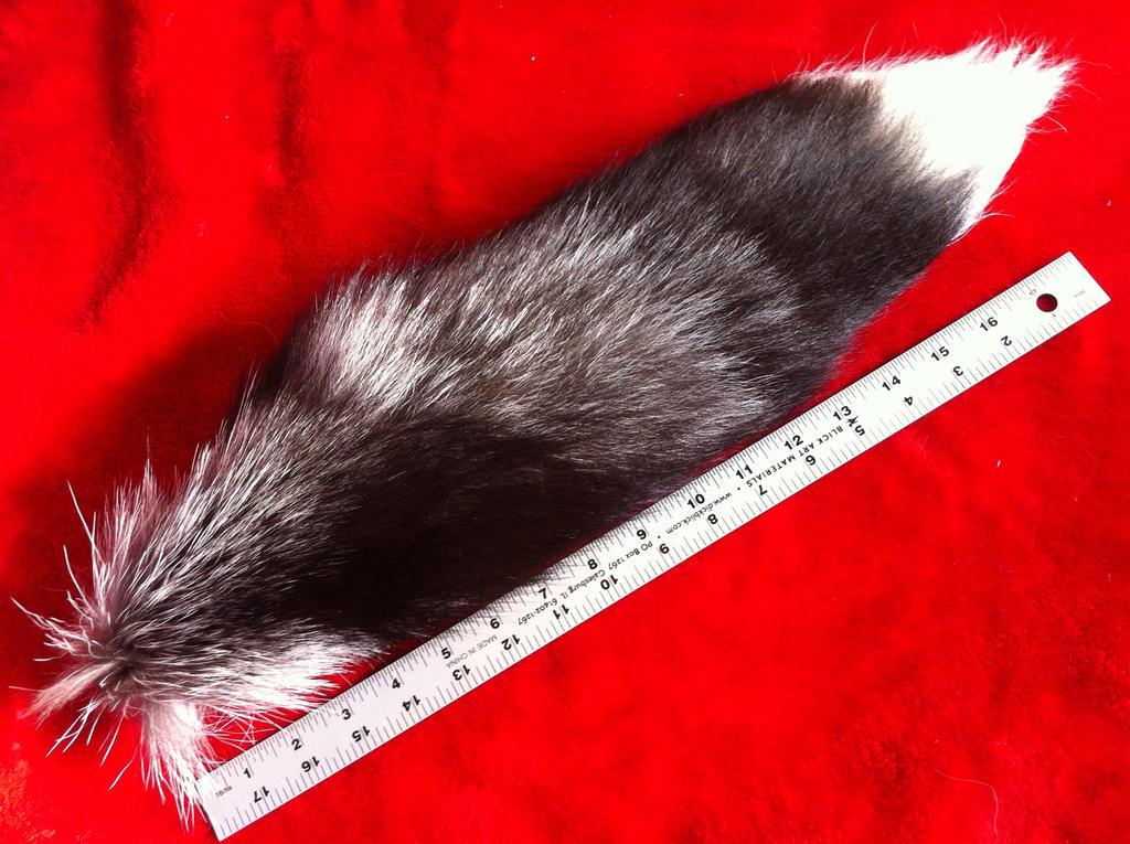 Silver Fox Tail by KonekoKaburagi