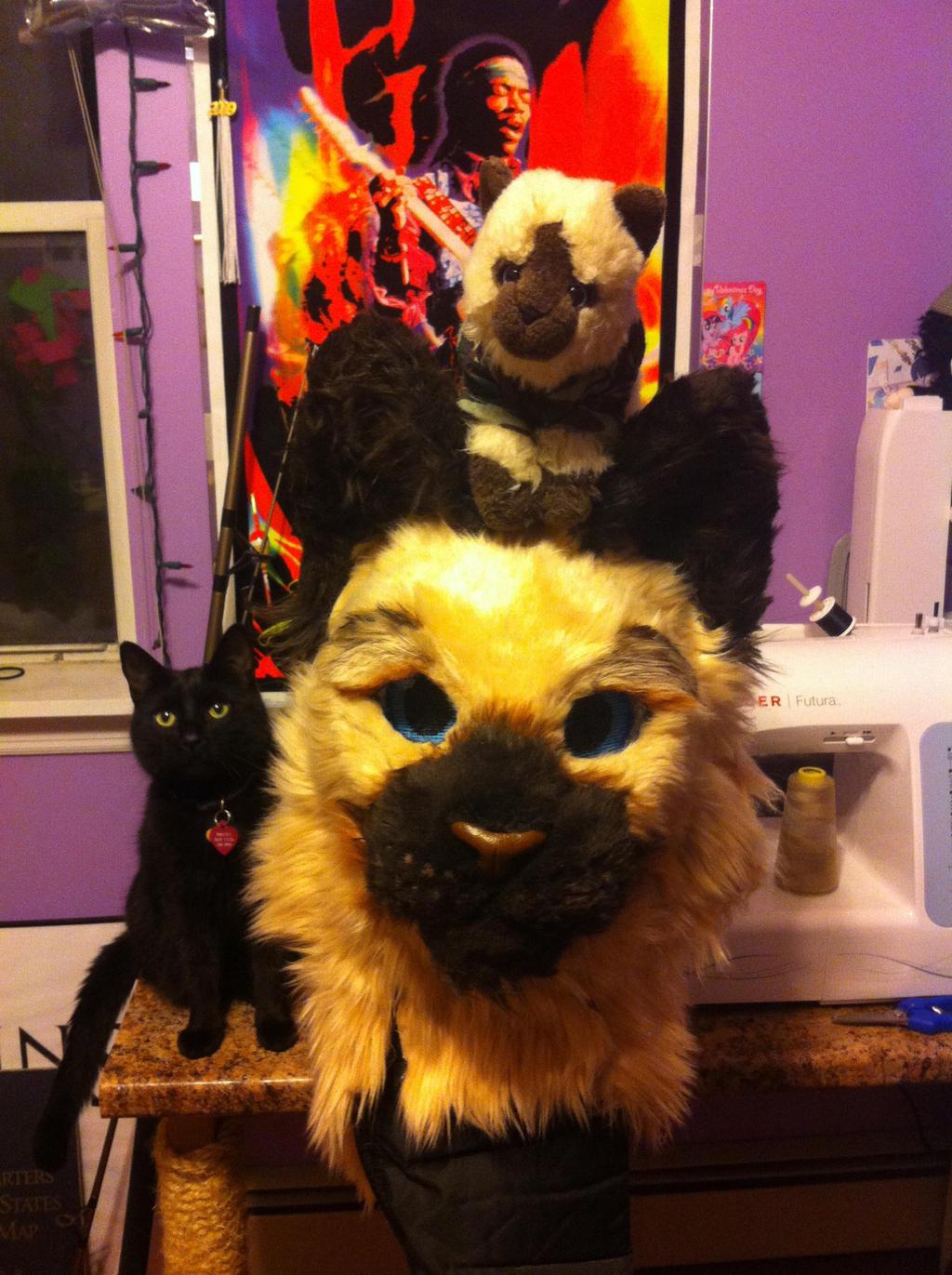 Meow Meow Meow by KonekoKaburagi