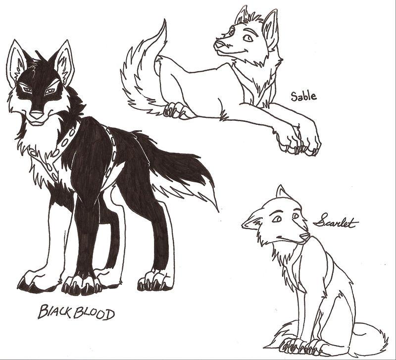 Aleu Wolf Related Keywords Aleu Wolf Long Tail Keywords