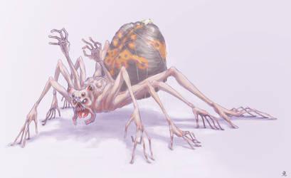 :SPIDER:
