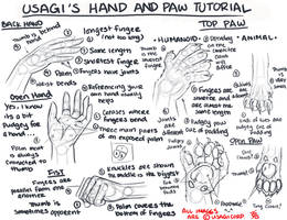 ::HAND AND PAW TUTORIAL::
