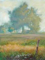 A Misty Morning 2 by JohnPatience