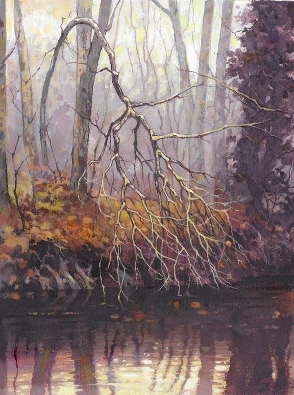 Riverbank by JohnPatience