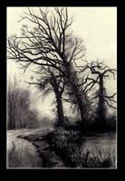 Trees in Winter by JohnPatience