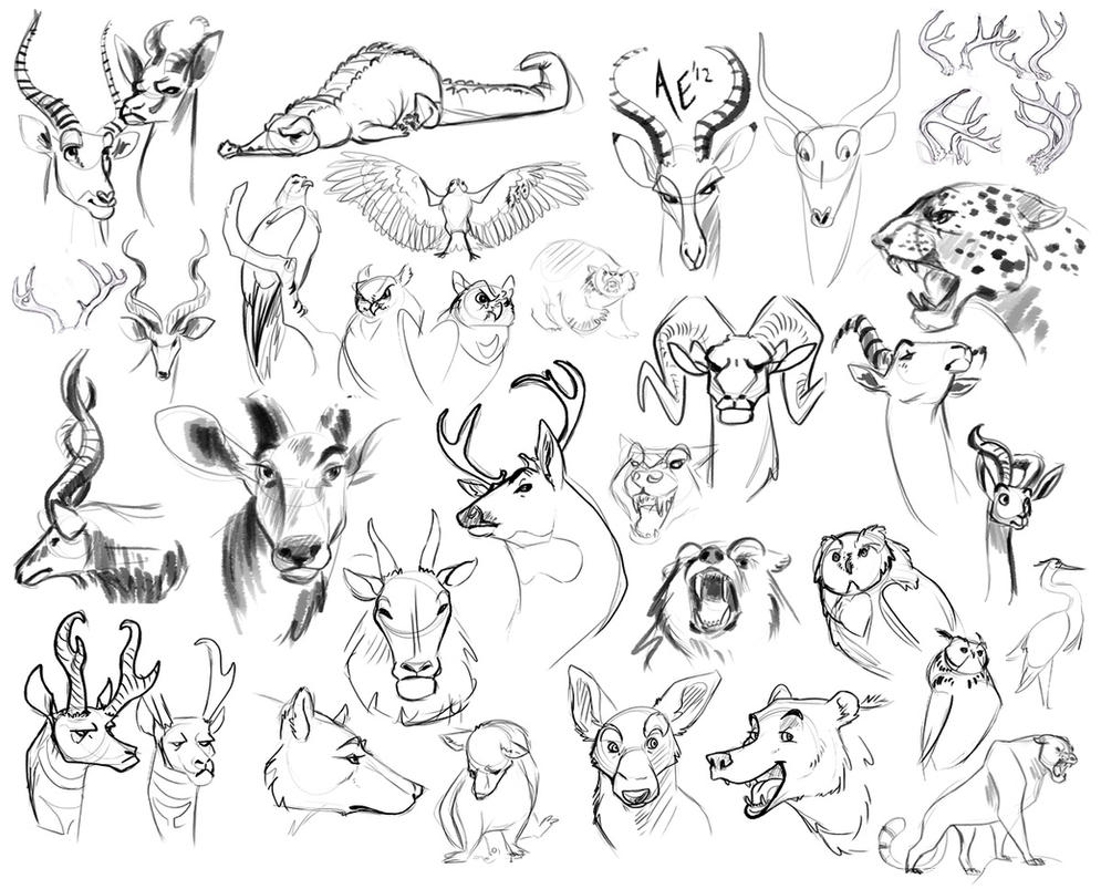 Sketch Dump: Draw All the Animals by Turtle-Arts on DeviantArt