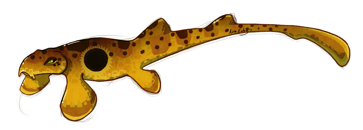 Shark Week: Epaulette Shark by Turtle-Arts