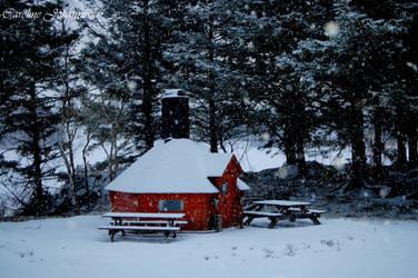Winter wonderland by caro-07
