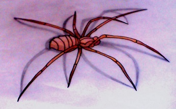 Spider by corpseandCo