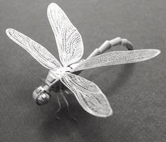 Dragonfly by corpseandCo