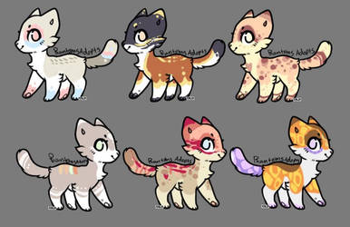 Kitty Adopts (6/6 Open!) by PhantomsAdopts