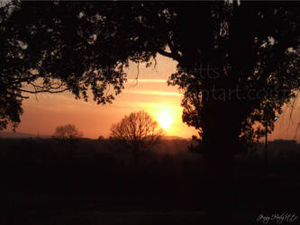 Cheltenham Sunset by Esmerelde