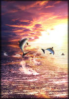 Dolphins at Sunset by LRJProductions
