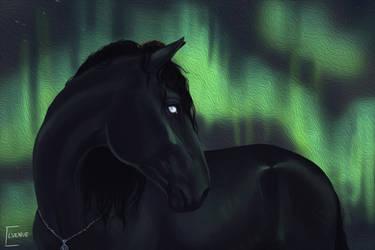 YHH Aurora - Calypso - Look-Heavenward