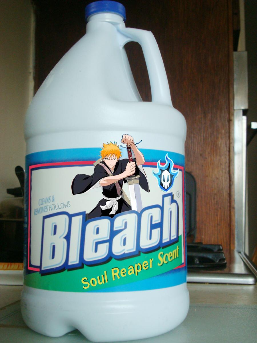 Bleach *^* - Página 2 Bleach____Literally_by_MasterSwordsmen1