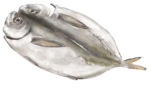 otenba-bekki's Profile Picture