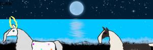 Alaqua  and Captain - Icelandic Night Sig