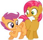 MLP: Scootaloo and Babs Seed's blank flank bump