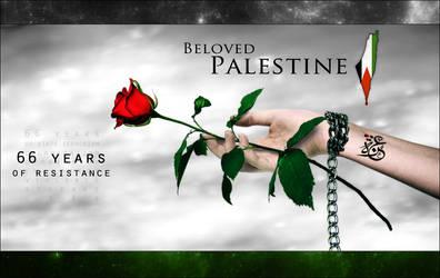 Palestine Land Day 30.03.13 by Silver786