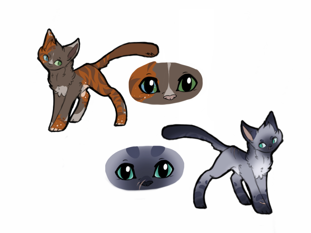 Warrior Cats Fill Out Form