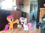 Cutie Mark Crusaders in the kitchen