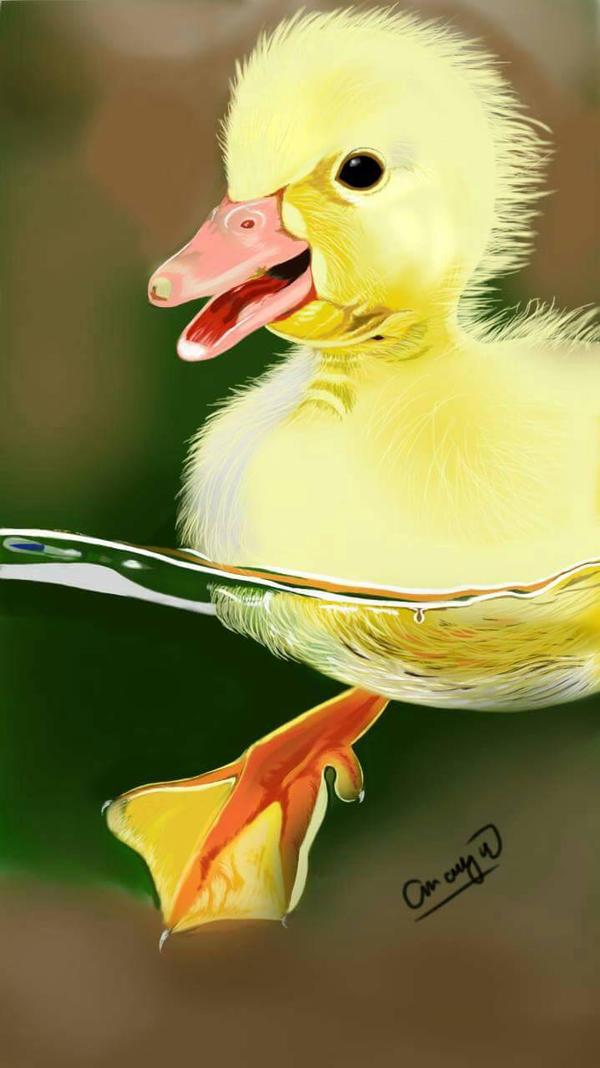 cutie duckling by melvin29