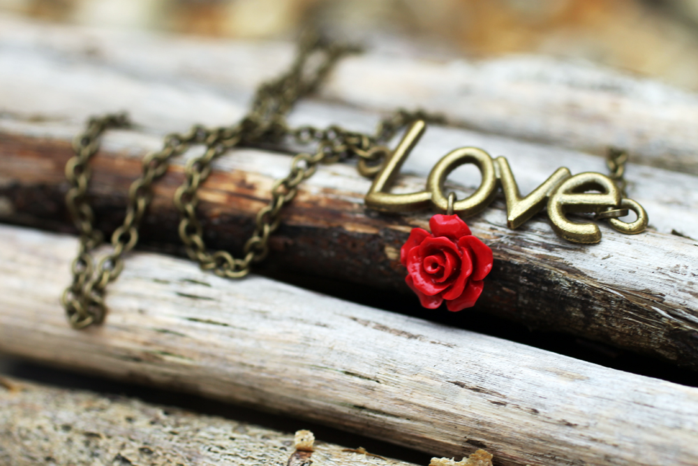 Antique Bronze Love Necklace With Red Rose Charm by Clerdy