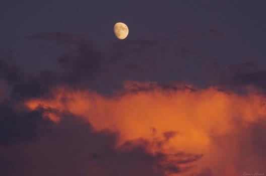 Bit of Moonshine................