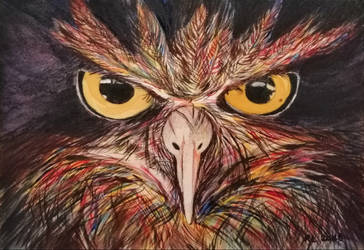 Angry owl by Rocksane-Art