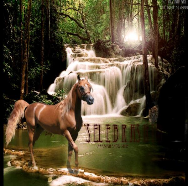 ^ Twilightstars ^ horses Manip__Chestnut_Horse_by_Cassie7219