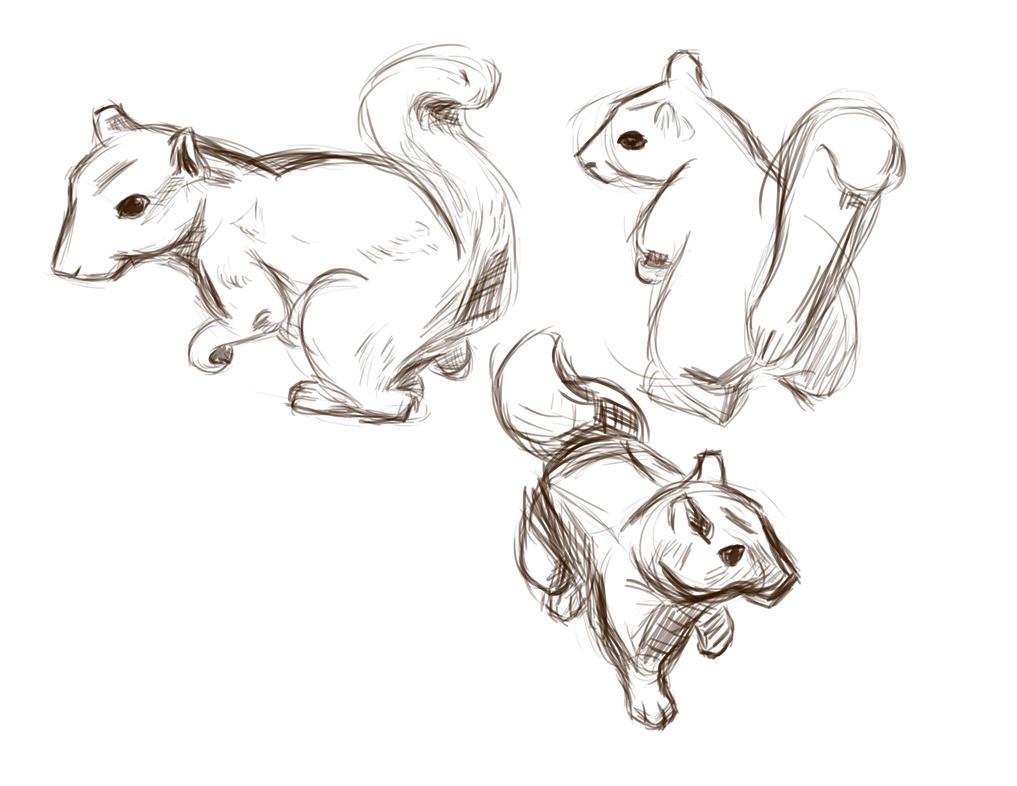 Squirrel!!! by Kekorre