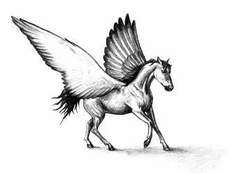 61 Pegasus by Azuho
