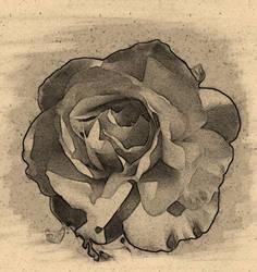 Charcoal Rose