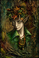 Spirit of the autumn forest by Candra