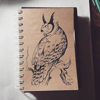 Instaart - Owl by Candra