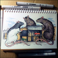 Sketchbook - Curious Rats by Candra
