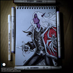 Sketchbook - Darkwing Drow by Candra