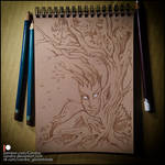 Sketchbook - Forest tales by Candra